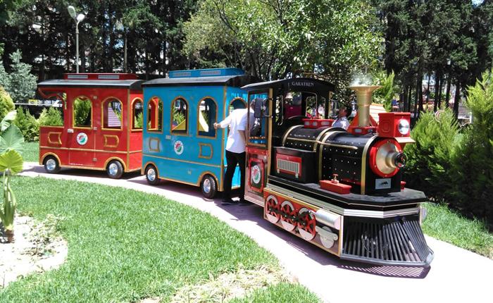 trackless train maxi model
